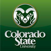 Colorado accounting training